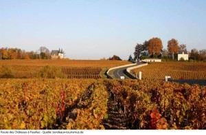 Read more about the article Bordeaux Normal