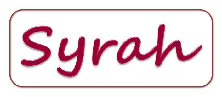 Syrah-Weinprobe bei Lenau Wein in Frankfurt