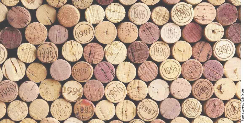 Endlich wieder Rotwein! Weinprobe 2017