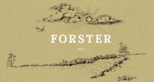 Weingut Forster – beste Empfehlung von der Nahe