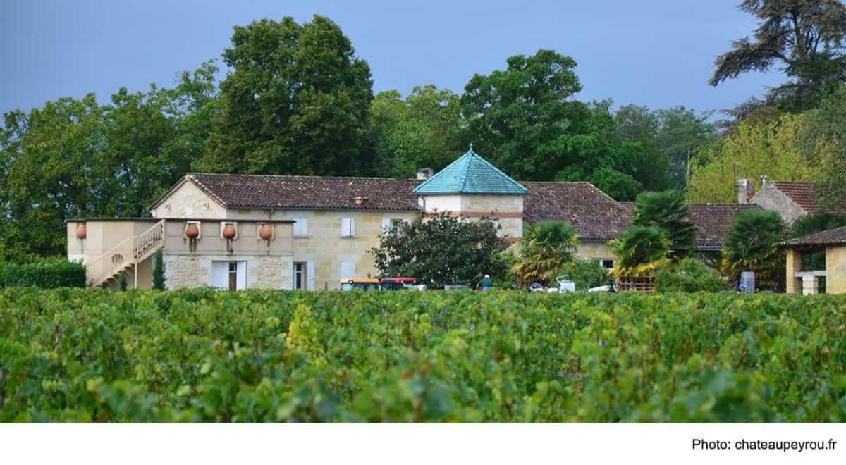 Das Weingut Château Peyrou
